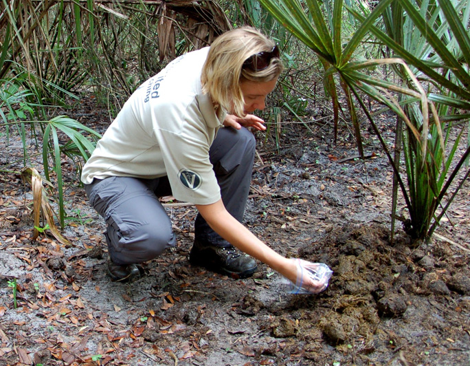 Photo of Dr. Gabriella Flacke collecting samples.