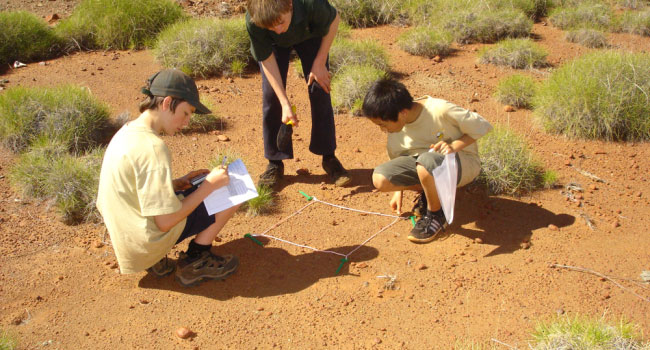 Digging Deep for WA's Underground Inhabitants