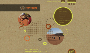 Screenshot of Microblitz website.