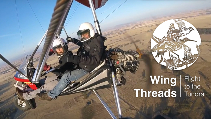 Wing Threads Banner