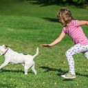 Dogs' impact on children's health and social-emotional development